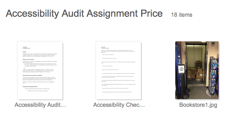access-price-accessibility-audit